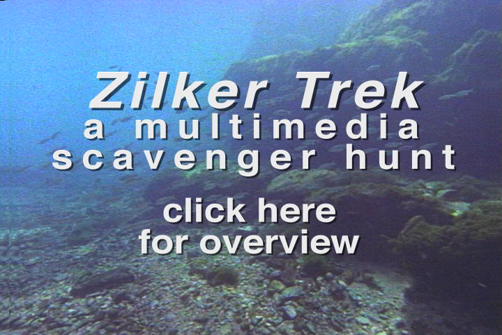 Intro to Zilker Trek